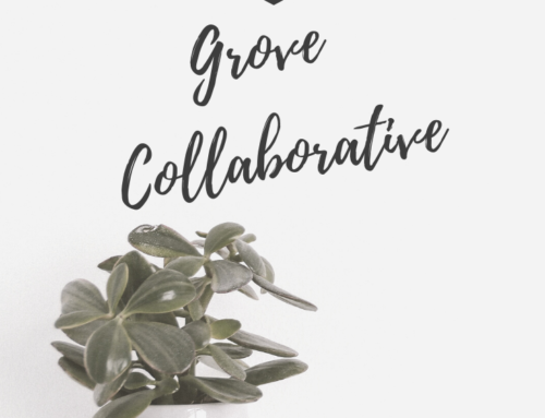 Grove Collaborative Review – Products For Your Green & Natural Home